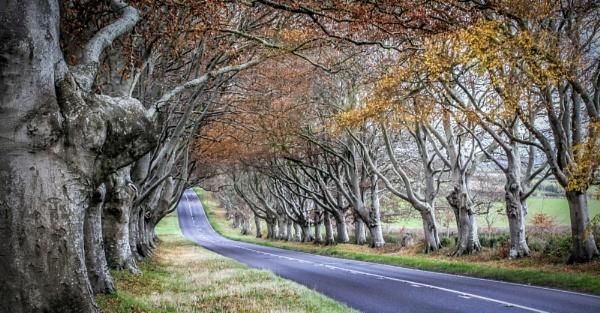Dorset by Jazzyjack