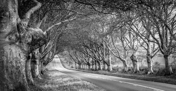 Dorset mono by Jazzyjack