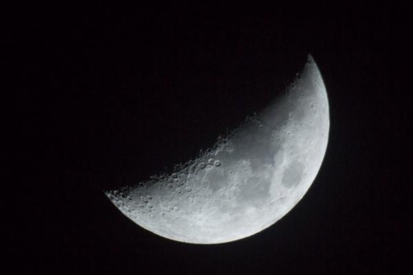 Lunar by MossyOak