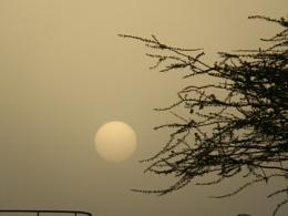 Dusty Evening