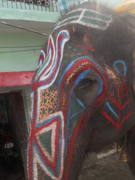 Indian Culture!!!!!!!