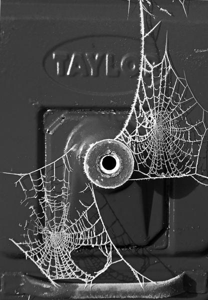 Cobweb by ChrisJP