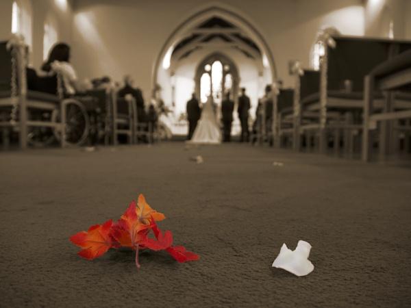 Wedding by neilfuller