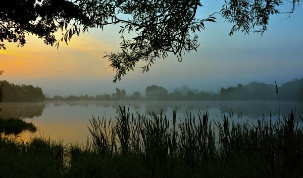 Misty Morning,Banton Dam,Kilsyth,Scotland by wulsy