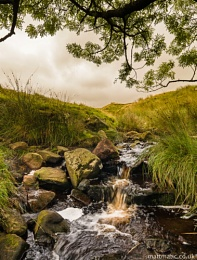 Stream in Quernmore