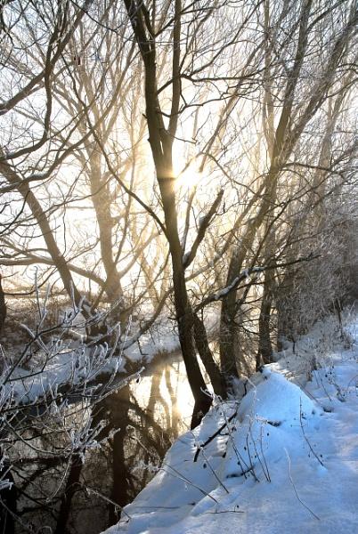 Winter stream by davereet