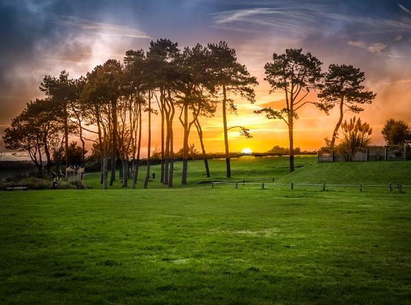 Sunrise by neeley