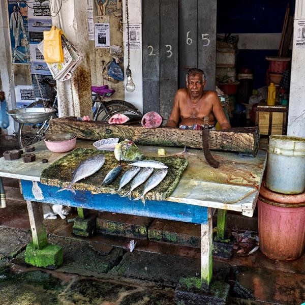 Fishmonger by RobboB