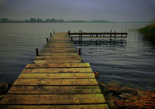 bridge of peace by atenytom