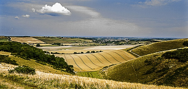 Bowcombe Valley by Keith James