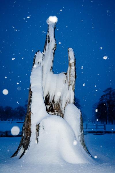 Snowflakes by ARodders