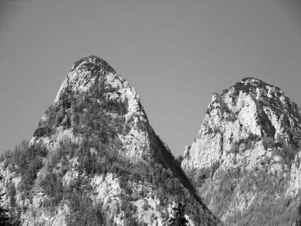Twin Peaks by gss