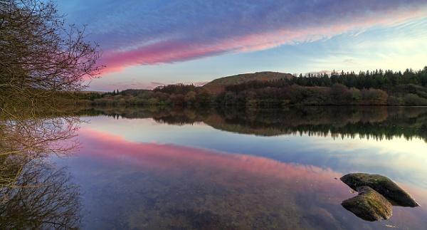 Dartmoor National Park by andyfox