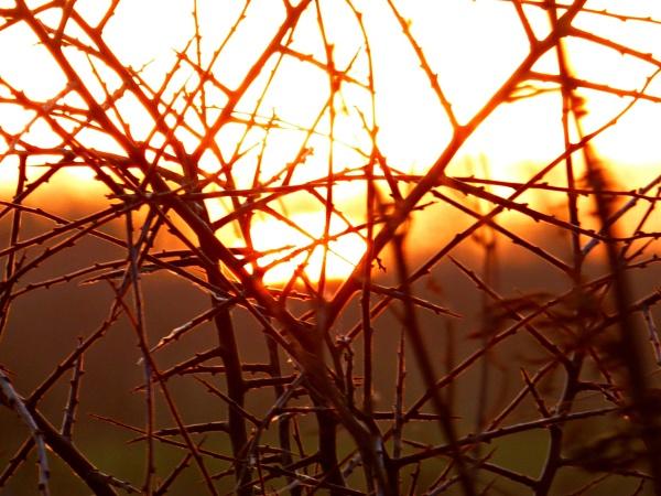 Sunrise by Gary66