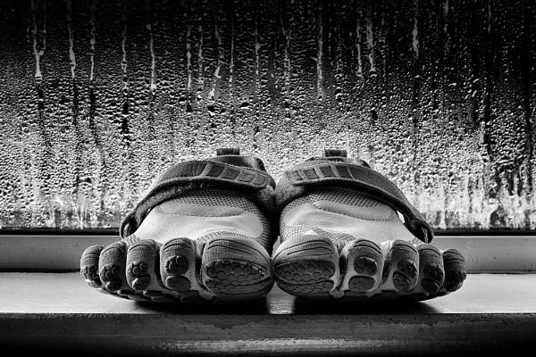 Happy Feet by shawnsphotos