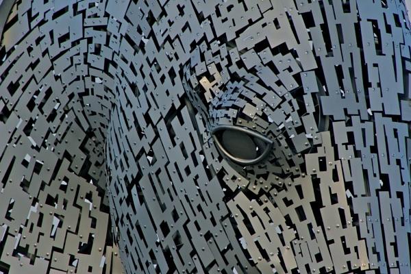 The eye of a Kelpie, Helix Park,Falkirk by Lelah