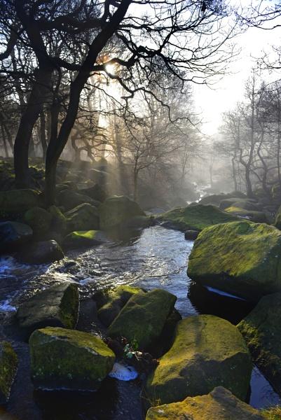 Misty stream by kojak
