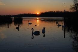 Sunset at Wroxham