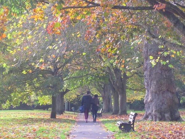 Autumn Lovers by Glostopcat