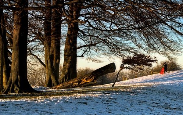 Winter Fun by SandraKay