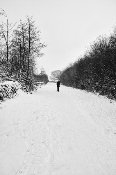 walking in the snow by psjekel
