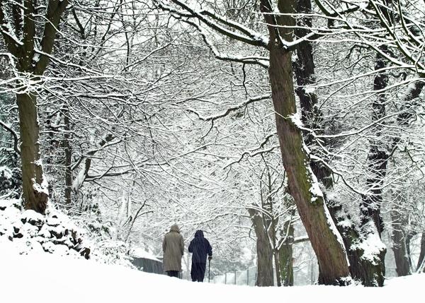 Winter Walk by victorburnside