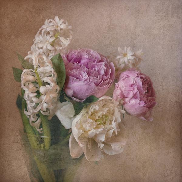 Romance by FrancescoErcolano