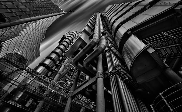 Lloyds by TimMunsey