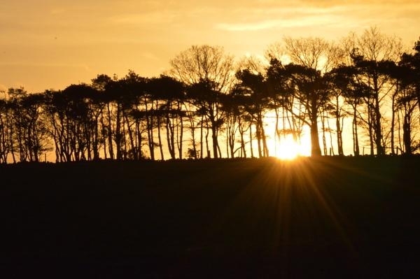Fewston Sunset by Brovy