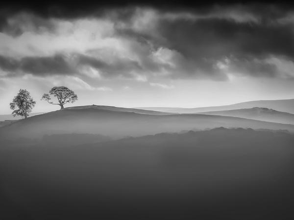 Misty Moor by neeley