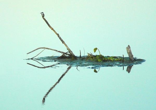 Adrift by crookymonsta