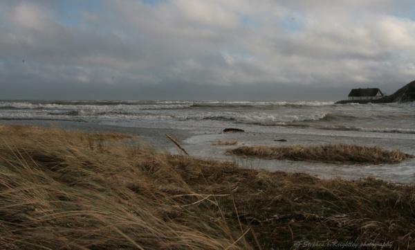 Rising tide by STEVELIN