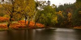 Lantys Autumn