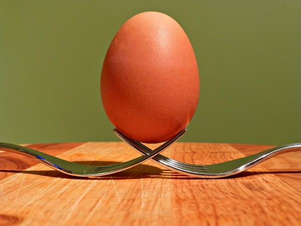 The Egg & Fork