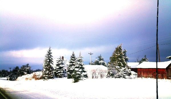 Winter Drive by shutterbug8156
