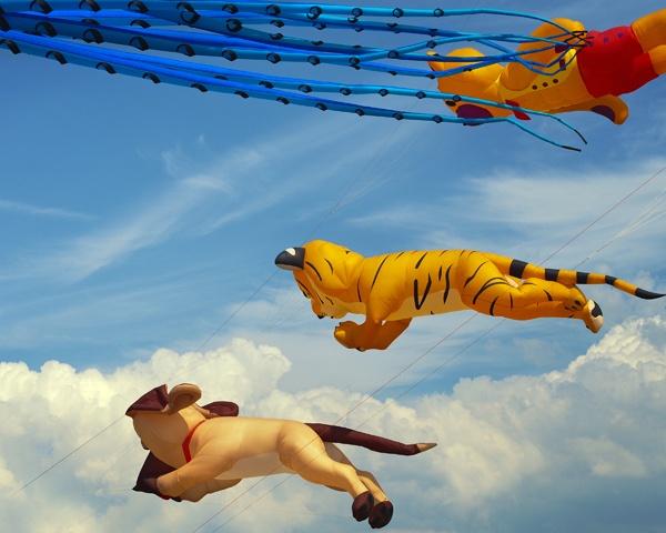 Kites by victorburnside