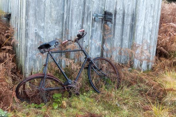 My exercise bike by John_Horner