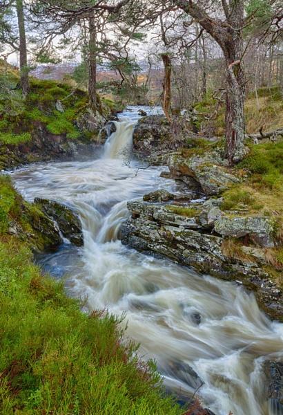 Allt Riabhach, Glen Affric by Colin_Leslie