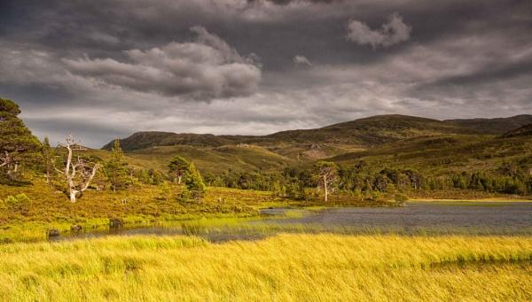 Loch Salach a Ghiubhais, Glen Affric. by Colin_Leslie