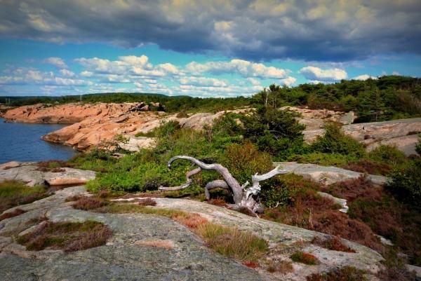I land av vikingene by MartaHari