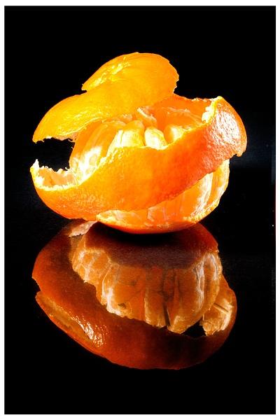 Agent orange by roybridgewood