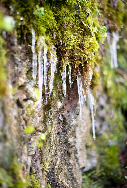 Icicles by jasonrwl