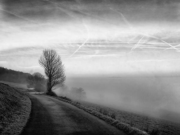 Winter\'s mist by mlseawell