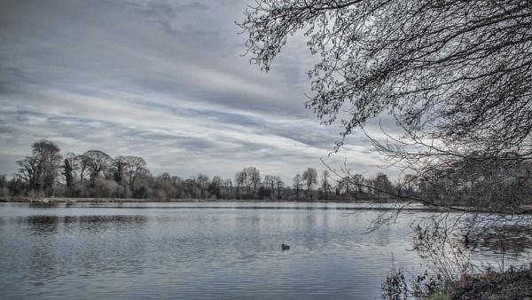 Trentham Lake by trihelm