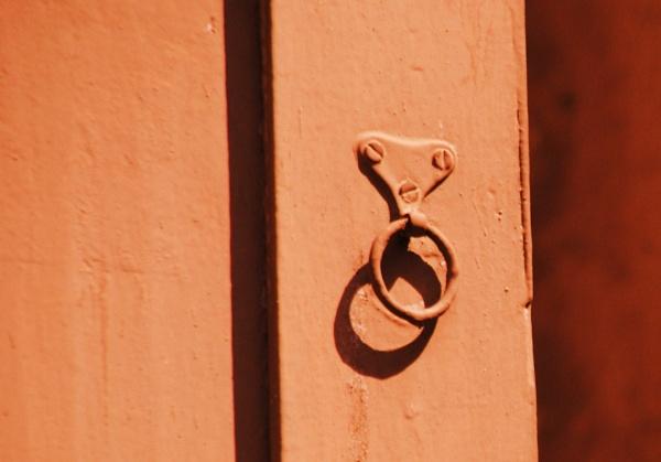 A Ring-Thing! by Chinga