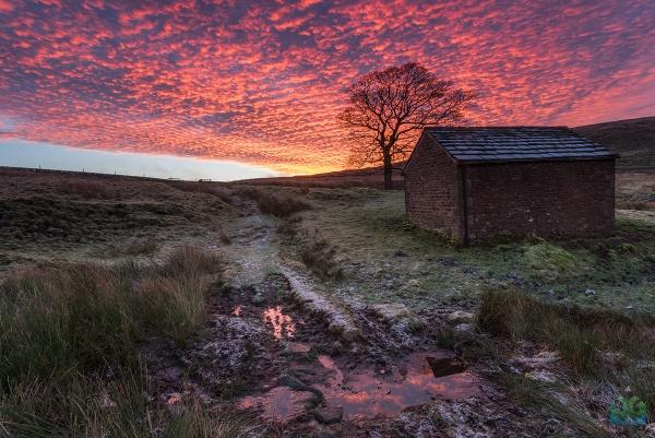 Wildboarclough Barn Sunrise by jamesgrant