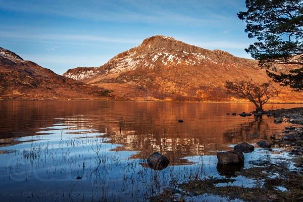 Loch Maree, Wester Ros Scotland by fletchphoto