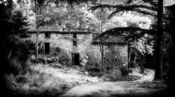 Desolate by Altruizin
