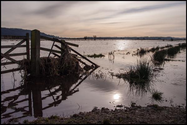 Flooded Field near Middlezoy by bwlchmawr