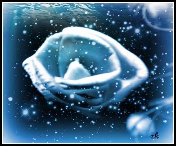 Fantasy underwater rose by ZoeKemp